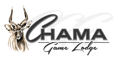 Chama-Game-Lodge-Logo-new-mobile-logo