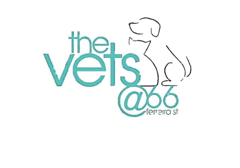 VET@66 LOGO NO BACKGROUND